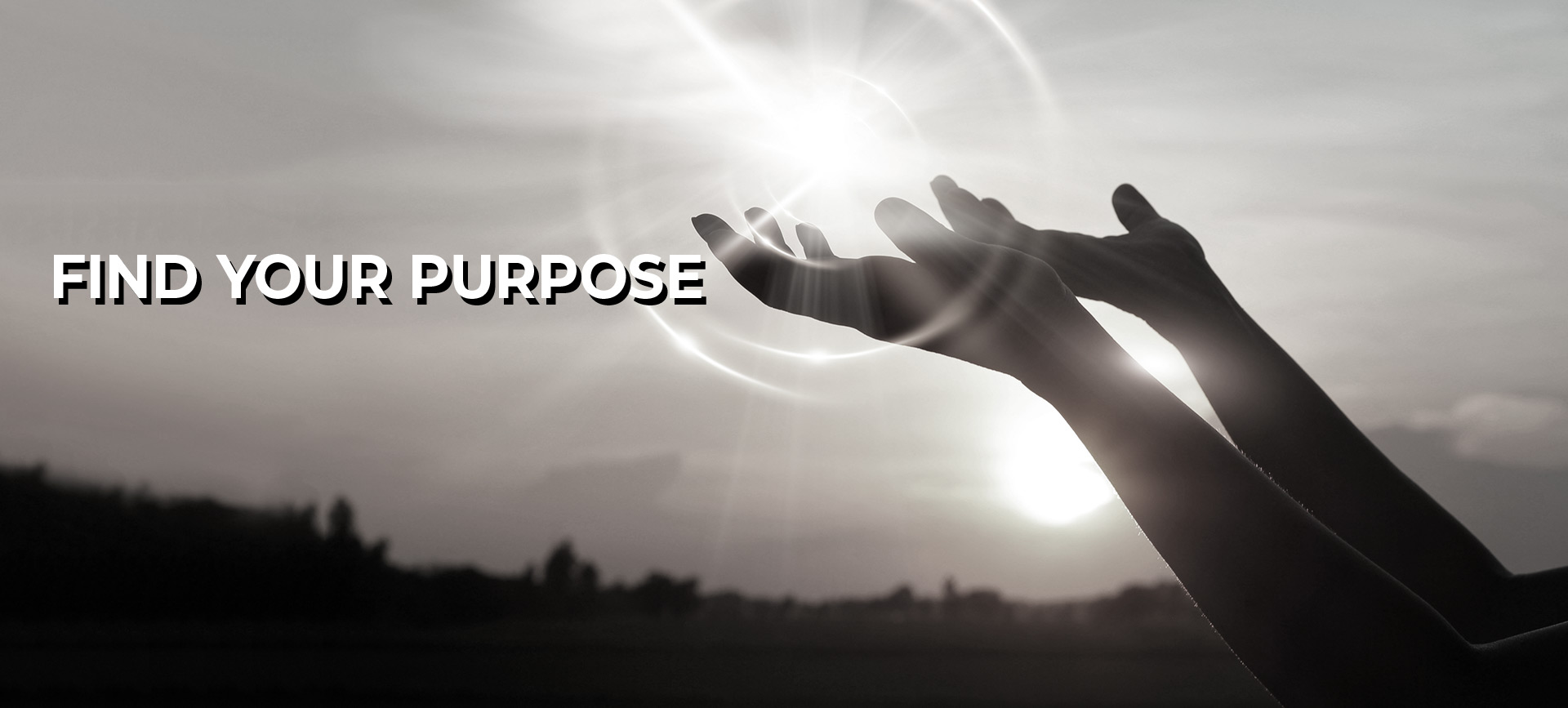 With coaching find your purpose